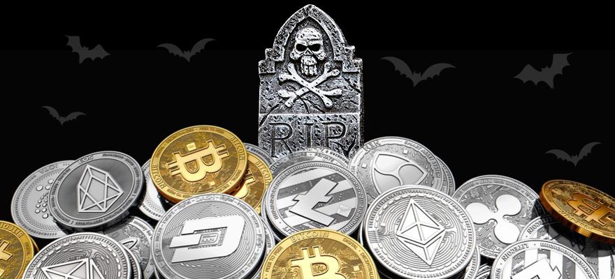 TBIS token description